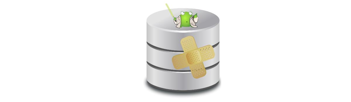 Data Recovery Effort